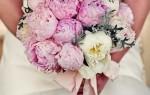 kwiaty cover