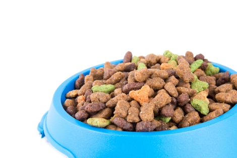 dry-cat-food-1467385919KAV