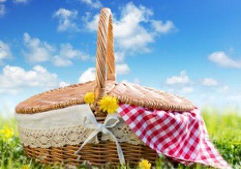 pikniks23