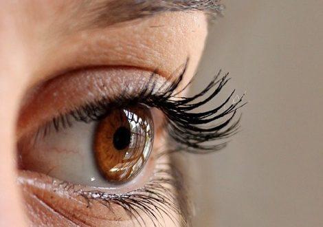 eyeyes
